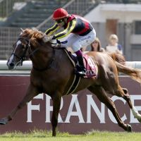 Off to the races: Japan's 2011 Horse of the Year Orfevre is the clear favorite to win the Arc after two other expected contenders were taken out of the race. | AFP-JIJI