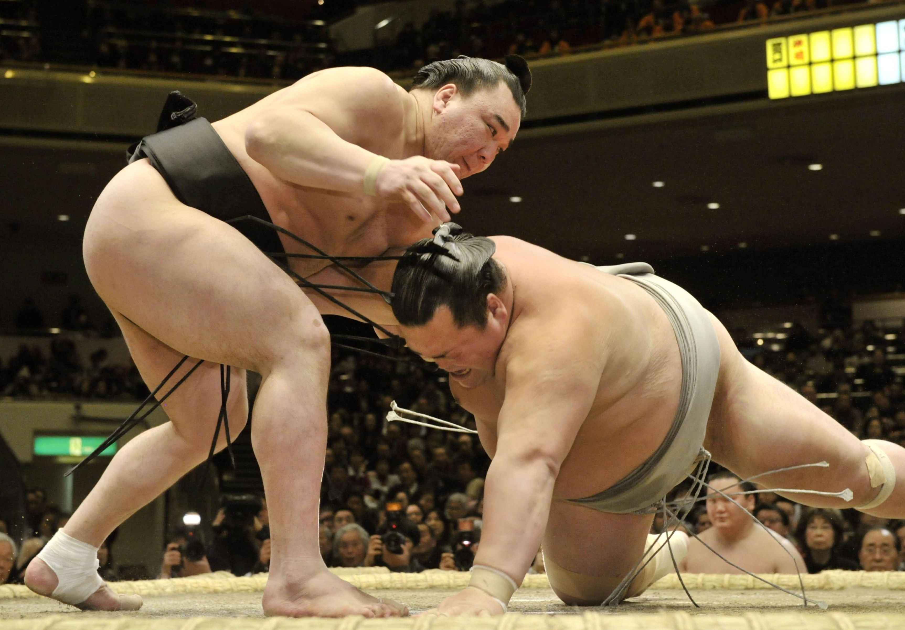 Powerful display: Yokozuna Harumafuji defeats Toyohibiki on Thursday at the New Year Grand Sumo Tournament. | KYODO