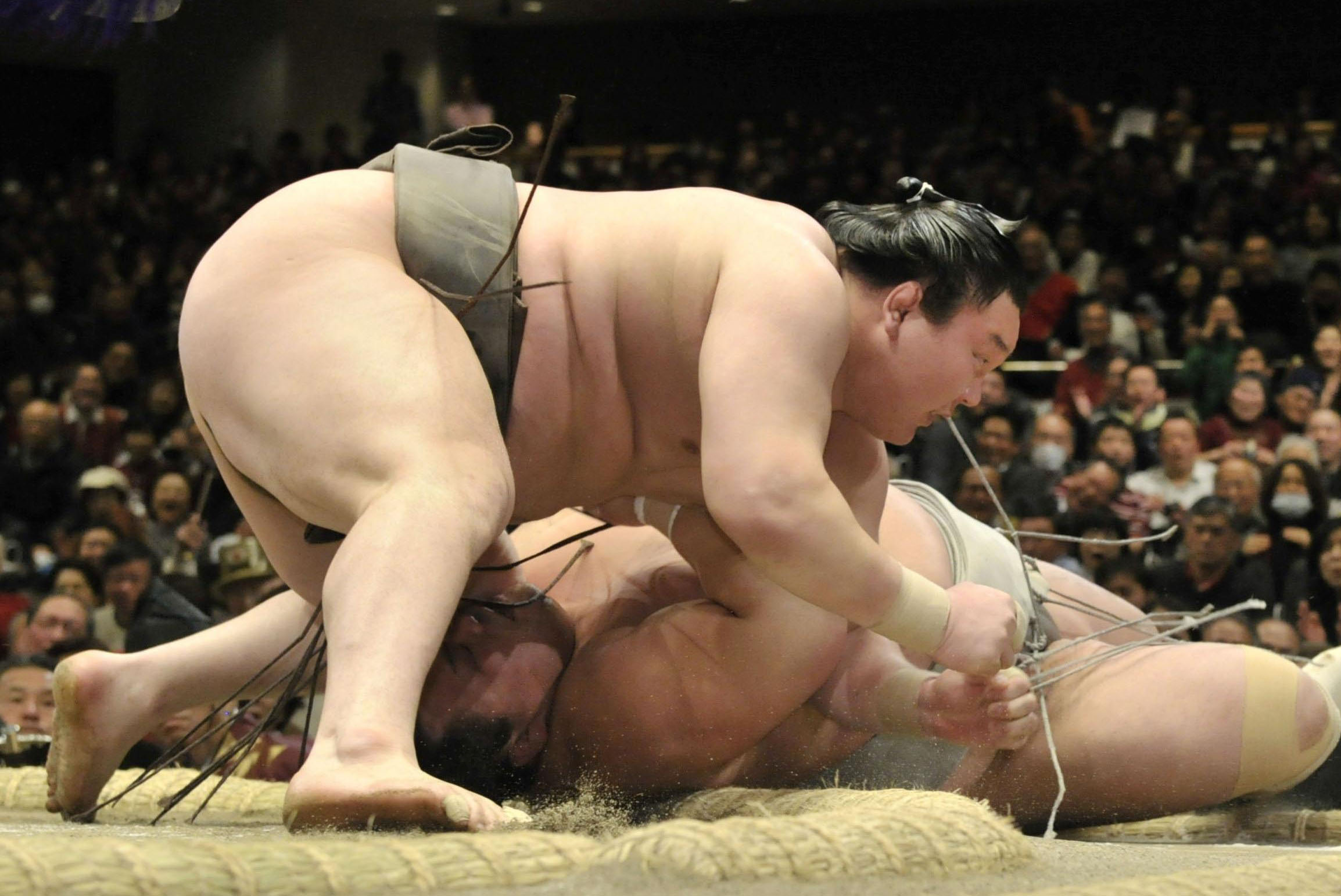 Pure power: Yokozuna Hakuho overwhelms Toyohibiki to win the final bout on Saturday at the New Year Grand Sumo Tournament in Tokyo. | KYODO