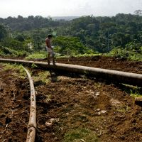 Trouble in paradise: A young boy stands on an oil pipeline in Ecuador's Yasuni National Park, one of the world's most biologically diverse areas. Ecuador is asking for &#36;3.6 billion in donations in return for leaving the oil in the ground and preserving the park. | AP