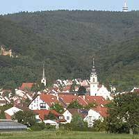 To the north of Heidelberg, small towns nestle under the Rhine escarpments (top), surrounded by intensive cultivation (above) on fertile soils. At this time of year, the song of blackbirds (below) in the evening can lend a powerful sense of location even to occasional visitors. | © IMAGES OF JAPAN