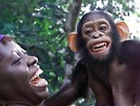 A  baby chimpanzee manages a smile despite losing his mother to hunters in Nigeria