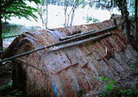 Mr. Matsuki's 'tea hut,' rethatched and topped with cedar bark