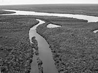 AN AERIAL VIEW of the Xingu River (above) in Xingu National Park, which flows north to join the Amazon River; a Kayapo tribe mother and child adorned with traditional body painting .