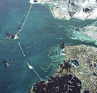 An aerial view (above) of the Saemangeum Estuary project at present, with most of the 33-km seawall slicing it off from the ocean already in place, and a totem that environmentalists set up there in the hope of warding off the projected completion that would threaten not only the area's ecology but tens of thousands of migratory birds.
