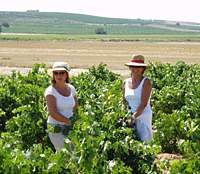 The search for the perfect region for red-wine grapes led the award-winning winemakers Victoria Benavides (left) and Victoria Pariente to Toro, a remote province to the northwest of Madrid whose thick-skinned Tinto de Toro grapes result in a wine of great weight. | PHOTO COURTESY OF DOS VICTORIAS