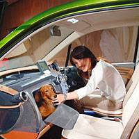 Honda's new pet-friendly W.O.W. wagon has a carrying ares for a small animal by the front passenger seat.