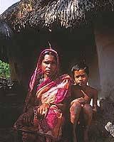 The sunderbans are full of destitute 'tiger widows':