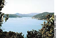 The view west from Kakui Island over the green Hinase Islands scattered amid the blue of the Seto inland Sea.
