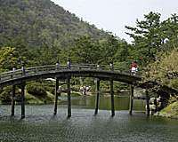 A wooden arched bridge spans one of the ponds at Ritsurin Koen (above); and a carefully manicured pine in Ritsurin Koen.