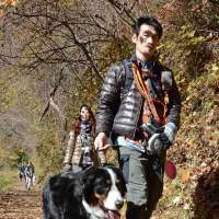 Fitness for Fido: A hiker walks with his pet during an event for dogs and their owners at Mount Mitake on Nov. 25. | KYODO