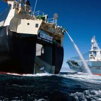 Japan asks Netherlands to clamp down on Sea Shepherd