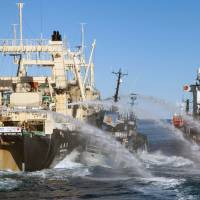 Sea Shepherd, whalers slam hulls in Antarctic waters