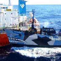 Right of way: A handout photo taken Monday shows the Sea Shepherd ship Bob Barker (right) colliding with the Japanese whaling fleet tanker Sun Laurel as the whalers and militant conservationists clash off Antarctica, with both sides accusing the other of ramming their vessels. | AFP-JIJI/INSTITUTE OF CETACEAN RESEARCH