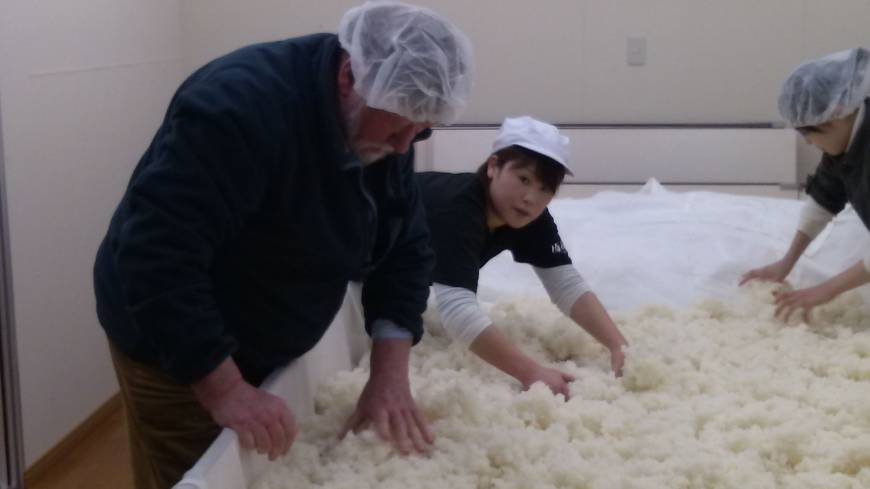 Hands-on: Old Nic helps ferment rice on a visit to fifth-generation sake maker Iwao Niizawa.