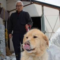 Tomio Kokubun evacuated from Minamisoma to Aizu Wakamatsu with his family and dog, Peace. | WINIFRED BIRD