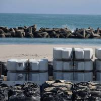 Making a comeback: Concrete blocks wait to bolster the seawall near Gamo tidal flat, where biodiversity first plunged but is now recovering from the 2011 tsunami. | WINIFRED BIRD