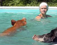 Barbara Grzechowiak, who works for Lucies Farm Ltd. in Britain, exercises a Berkshire black and a Tamworth pig in a swimming pool. | PHOTO COURTESY OF LUCIES FARM LTD./KYODO