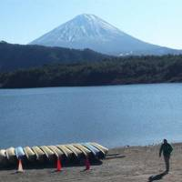 Lucky lake: Mount Fuji serves as the backdrop for Yamanashi Prefecture's Lake Saiko, where a species of salmon once thought extinct was discovered in 2010. | KYODO