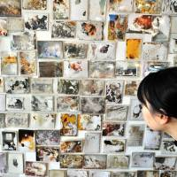 Powerful images: A woman views family photos swept away in the March 11 tsunami and later recovered, at the Akaaka Gallery in Minato Ward, Tokyo, on Wednesday. About 1,500 such photos are on display in the exhibition titled 'Lost & Found,' which runs through Feb. 11. | YOSHIAKI MIURA