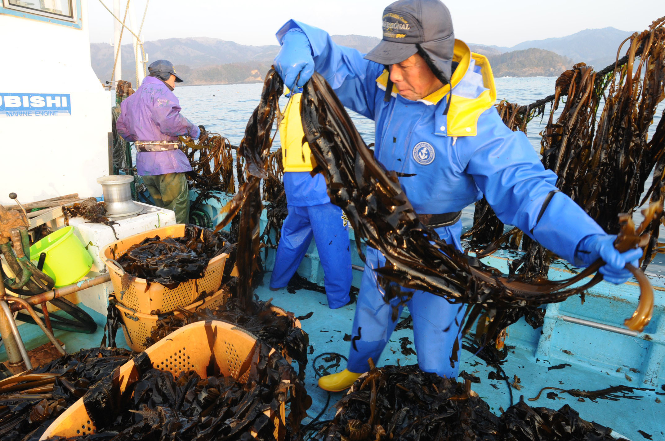 japanese fishing industry essay Japan's manufacturing industry july 2010 ministry of economy trade and industry  although manufacturing industry has led the japanese economy and has been responsible for 90% of japan's.