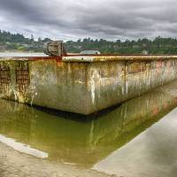 Transplant: A dock from the Tohoku region that drifted across the Pacific Ocean after being washed away by the March 2011 tsunami is seen on a beach in Newport, Oregon, in July 2012. | HATFIELD MARINE SCIENCE CENTER OF OREGON STATE UNIVERSITY/KYODO