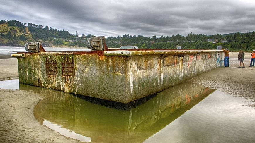 Transplant: A dock from the Tohoku region that drifted across the Pacific Ocean after being washed away by the March 2011 tsunami is seen on a beach in Newport, Oregon, in July 2012.