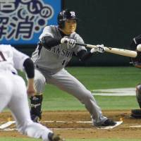 Focusing on the ball: The Tigers' Naoto Tsuru makes a squeeze bunt against Giants reliever Kiyoshi Toyoda in the sixth inning on Saturday at Tokyo Dome. Hanshin won 8-2. | KYODO PHOTO