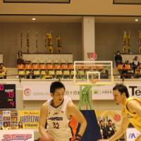 Solid game: Yuichi Ikeda, seen in action last season, scored 10 points in the Niigata Albirex BB's 100-71 win over the Saitama Broncos on Saturday. | HIROKO IWASA