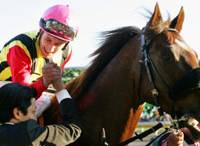 Screen Hero takes center stage with Japan Cup victory