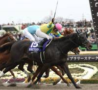 Strong effort: Jockey Hiroyuki Uchida and Success Brocken, a 4-year-old colt, win the the February Stakes on Sunday at Tokyo Racecourse. | KYODO PHOTO