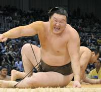 Hard landing: Mongolian yokozuna Hakuho grimaces after being tossed on to the dohyo by Aminishiki on the first day of the Kyushu Grand Sumo Tournament. | KYODO PHOTO