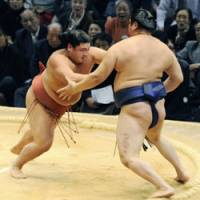 Winning form: Maegashira No. 8 Yoshikaze (left) beats maegashira Tokitenku on the 13th of the Kyushu Grand Sumo Tournament on Friday. | KYODO PHOTO