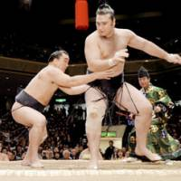 Ozeki strikes back: Harumafuji (left) clinches a winning record in the New Year Grand Sumo Tournament with his eighth victory over fellow ozeki Kotooshu on Saturday. | KYODO PHOTO