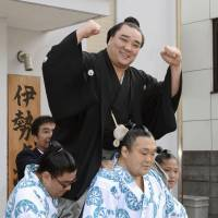 Catch of the day: Harumafuji holds a fish to celebrate his promotion to sumo's highest rank of yokozuna on Wednesday alongside stablemaster Isegahama. Harumafuji becomes the first new yokozuna since fellow Mongolian Hakuho was promoted in 2007. | KYODO