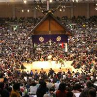 Two yokozuna vying for the top prize at Kyushu Basho in Fukuoka guaranteeed healthy attendance numbers. | MARK BUCKTON PHOTO