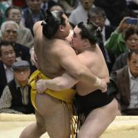 Not a job for the timid: Yokozuna Harumaufji (right) works for a win against Shohozan on Tuesday in Osaka. | KYODO