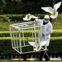 Catching the flu: As a precautionary measure against bird flu, a worker carries a cage during an attempt to catch pigeons in People's Square in Shanghai on Saturday. | AP