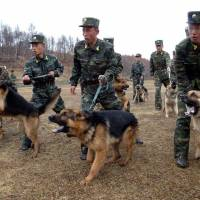 North Korean military dog handlers take part in a drill Saturday. | AFP-JIJI
