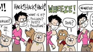 Allergies