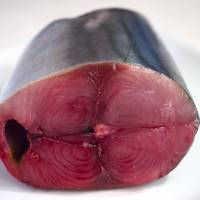 <em>Katsuo</em>, Japan's ubiquitous tuna