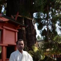 Brief encounters: Groundskeeper Masahito Nakamura at Kasuga Grand Shrine in Nara with a sugi (Japanese cedar) more than 800 years old. | WINIFRED BIRD