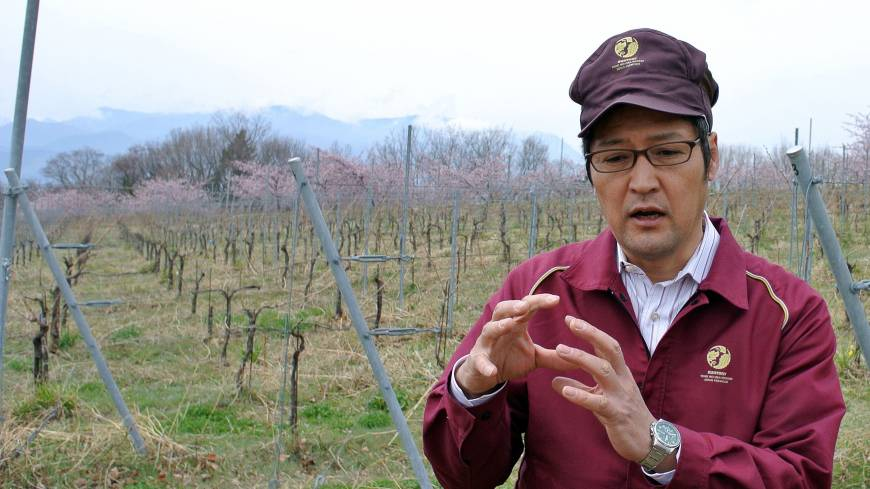 Looking abroad: Naoki Watanabe of Suntory's Tomi no oka winery in Kai, Yamanashi Prefecture, is interviewed March 27.