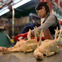 Everything must go: Slaughtered chickens line a counter at the Kowloon City Market in Hong Kong on Thursday. | BLOOMBERG