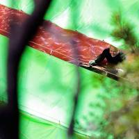 Out of sight: Grasping a steel spear in his right hand and the fin of a dolphin (obscured by tarpaulin) in the other, a fisheries worker smiles as he prepares to sever the animal's spinal cord in the bloody waters of 'killer cove' in Taiji, Wakayama Prefecture, in September 2009. | ROB GILHOOLY
