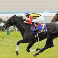 Two-year-old champion Logotype stays in front of Epiphaneia to bag the first race of the Japanese triple crown at Nakayama Racecourse. | KYODO