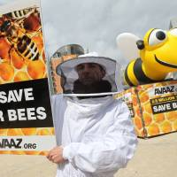 What all the buzz is about: Beekeepers protest next to a giant inflatable bee in front of the European Council and Commission in Brussels on Monday. | AP