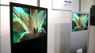 [VIDEO] Cutting-edge display technology in Japan