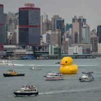 Rubber duck makes big splash in Hong Kong