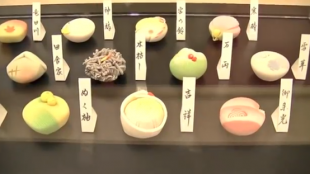 [VIDEO] The 26th National Confectionary Exposition